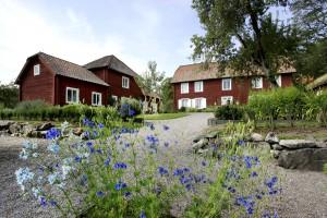 Linnés Hammarby, Uppsala